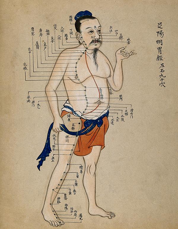 Древняя миниатюра - меридианы тела