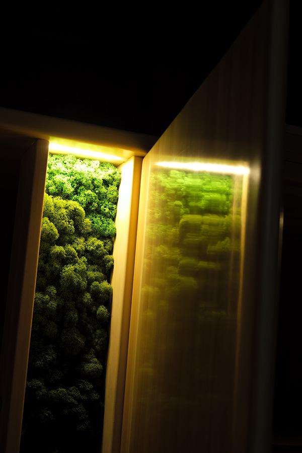 Подсвеченный мох платяного шкафа из массива кедра