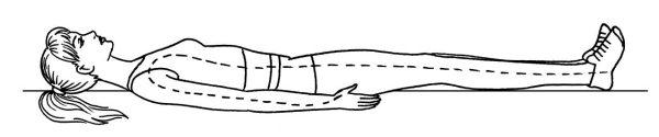 модель для горизонтальной фитобочки